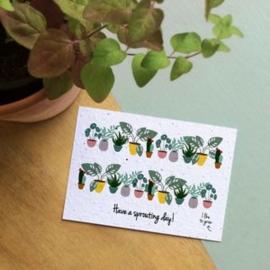 Bloom Your Message - Bloeikaarten 'Have a sprouting day' (fleurige bloemen)
