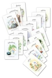 MOOQI - Cadeaukaartjes voordeelpakket 16 stuks