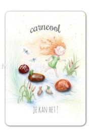 MOOQI - Ansichtkaart Carneool