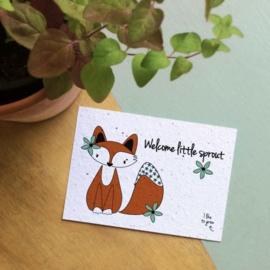 Bloom Your Message - Bloeikaarten 'Welcome little sprout' (fleurige bloemen)