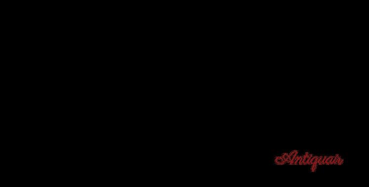 bettygroeneveld-siebelink-antiquair