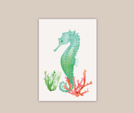 Zeepaardje poster A4 | pre-order