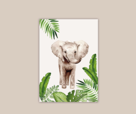 Afrikaanse Olifant poster A4
