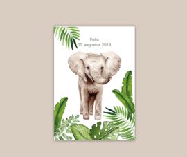 Afrikaanse Olifant poster A4 - gepersonaliseerd