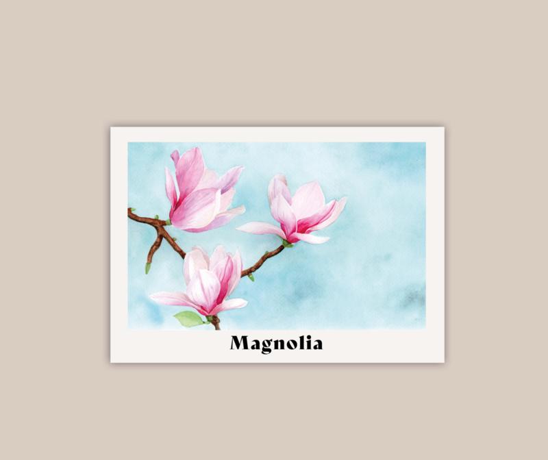 Magnolia poster A4 | pre-order
