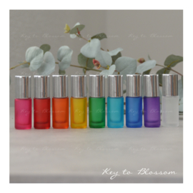 Rainbow Roller Bottles (5ml) with Shiny Silver Caps - Set of 9