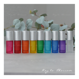 Rainbow Roller Bottles (5ml) with Brushed Silver Caps - Set of 9