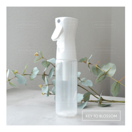 Spray Bottle 300ml