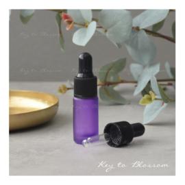 Glass Dropper Bottle (5ml) - Purple