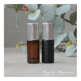 Glazen Roller 5 ml - Shiny Silver (diverse opties)