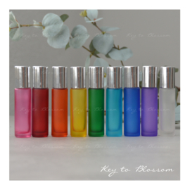 Rainbow Roller Bottles (10ml) with Shiny Silver Caps - Set of 9