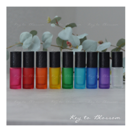 Rainbow Roller Bottles (5ml) with Brushed Black Caps - Set of 9