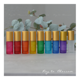 Rainbow Roller Bottles (5ml) with Matte Golden Caps - Set of 9