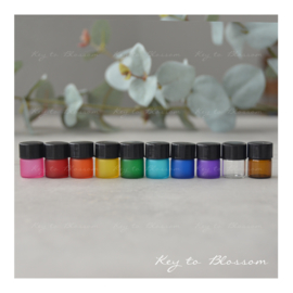Sample Vial Bottles 1ml - Set of 8 - Rainbow Colours