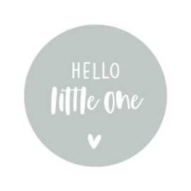 Sticker | Hello little one | Mint | 5 stuks