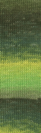 Merino 120 degradé 002 groen