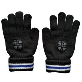 PEC Zwolle handschoenen junior