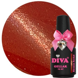 Diva Gellak Cat Eye Blossom Rocket 15 ml