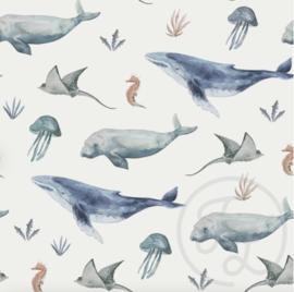Family Fabrics - Deep Sea Life Jersey
