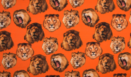 Tricot oranje leeuwen