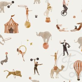 Family Fabrics - Circus Jersey
