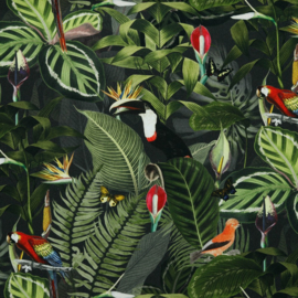 Canvas jungle