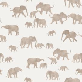 Family Fabrics - Elephants Jersey