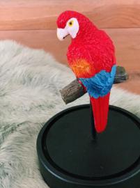 Stolp met papegaai