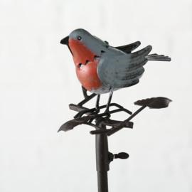 Regenmeter vogel