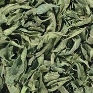 Verbena blad
