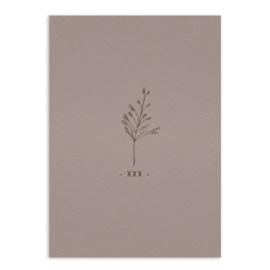 -xxx- flowers - ansichtkaart