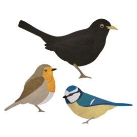 Vogel muurstickers | Set van 3