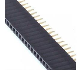 40 Pins header Female 2.54mm