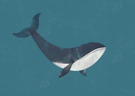 kaart, walvis 10 stuks