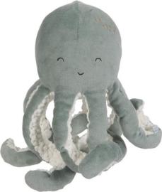 Octopus groen
