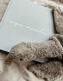 Negen maandenboek Sage linnen