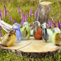 Vogel diverse kleuren