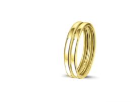 RG 026 gouden aanschuifringen
