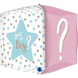 Folie Ballon Girl Or Boy? (Leeg)