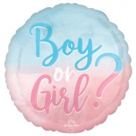 Folie Ballon Boy Or Girl (leeg)