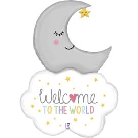 Folie Ballon Welcome to the world (leeg)