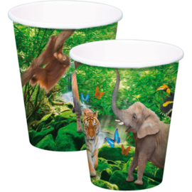 Safari Bekers