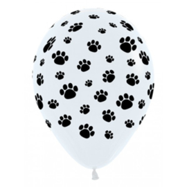Latex Ballonnen Paw