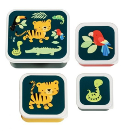 Snackdoosje 4 set Jungle Tijger
