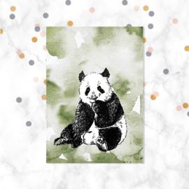 Ansichtkaart || Panda