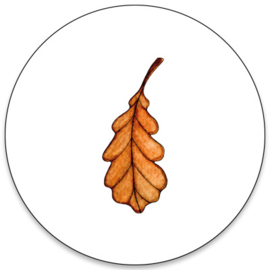 Sticker   Herfst blad   10 stuks