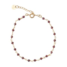 BS - Harmony Garnet Silver Gold Plated Bracelet (AW22999)