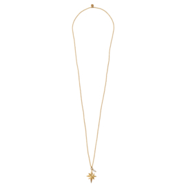 BS - Paradise Moonstone Gold Plated Necklace (BL26120)