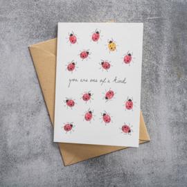 BS - Greeting Card Ladybugs (GC0057)