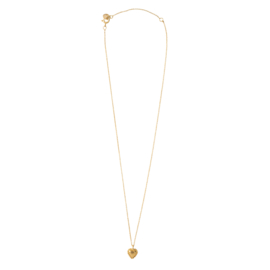 BS - Delicate Heart Silver Gold Plated Necklace (AW24594)